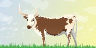 Longhornkobakgrund Royaltyfri Illustrationer