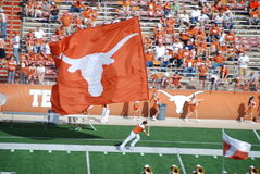 longhorns texas för högskolafotbolllek Arkivbilder