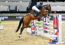 Longines beherrscht Pferd Stockbild