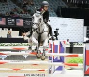 Longines beherrscht Pferd Lizenzfreie Stockfotos