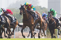 LONGINES Hong Kong Mile : Ambitious Dragon Stock Images