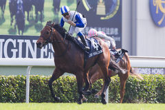 LONGINES Hong Kong Sprint : Lord Kanaloa Royalty Free Stock Photos