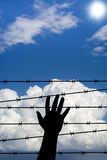Longing for freedom. Blue sky, hope and longing for freedom royalty free stock photography