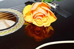 Longing for music, symbols. Beautiful rose on the strings of a guitar, suggesting the desire for music, nature, joy and love royalty free stock image