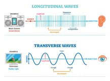 Longitudinal and Transverse wave type, vector illustration scientific diagram. Sonic and visual perception principle. Longitudinal and Transverse wave type stock illustration