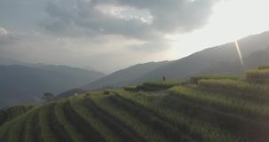 Longji Rice Terrace in Ping An Village stock video footage