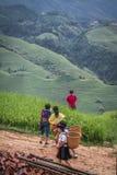 Longji rice terraces. Dazhai village in Longji rice terraces, Guangxi province Royalty Free Stock Photography