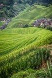 Longji rice terraces. Dazhai village in Longji rice terraces, Guangxi province Stock Photography