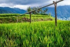 Longji rice terraces. Dazhai village in Longji rice terraces, Guangxi province Stock Photos