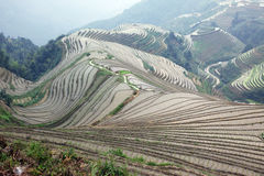 Longji rice terraces Stock Photo