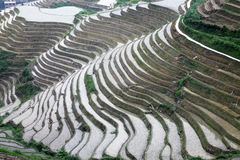 Longji rice terraces, Guangxi province, China Stock Photos
