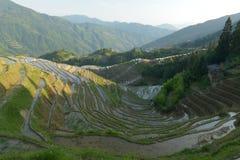 Longji Rice Terraces, Guangxi province, China. The Longji Rice Terraces are located in Longsheng County, about 100 kilometres from Guilin, Guangxi, China Stock Photo