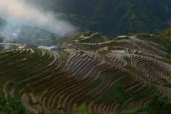Longji Rice Terraces, Guangxi province, China. The Longji Rice Terraces are located in Longsheng County, about 100 kilometres from Guilin, Guangxi, China Royalty Free Stock Photos