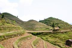 Longji Rice Terraces Stock Photography