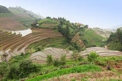 Longji riceterrasser, Kina Arkivbild