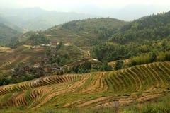 Longji taras, Guangxi, porcelana Zdjęcie Royalty Free