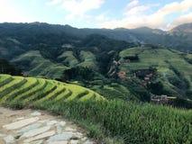 Longji taras w Guilin, Chiny fotografia royalty free