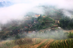 Longji terrace with fog ,Guilin Royalty Free Stock Images
