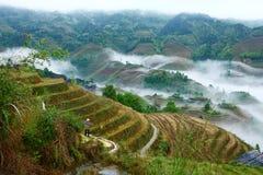 Longji terrace in fog,Guilin Stock Photo
