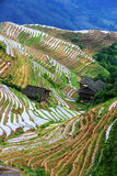 Longji terrace ,Guilin Royalty Free Stock Image