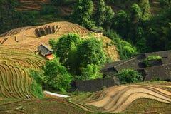 Longji terrace ,Guilin Royalty Free Stock Image