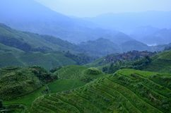 Longji terrace scenery Stock Photo