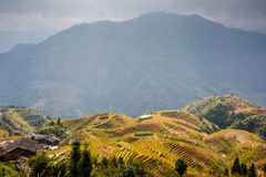 Longji terraced landscape in Autumn. Longji terraces after the autumn harvest with ancient village at Longsheng, Guilin, Guangxi province, China royalty free stock images