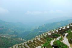 Longji terrassfält i Guilin Arkivbilder