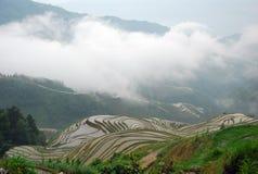 Longji terrassfält i Guilin Royaltyfri Bild