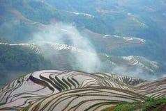 Longji terrassfält i Guilin Fotografering för Bildbyråer