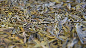 Longjing tea or Dragon Well tea stock footage