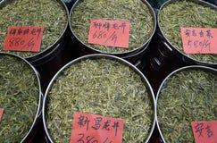 Longjing tefält i Hangzhou Royaltyfri Bild