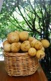 Longkong basket Stock Photo