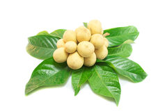 Longkong-Frucht (Lansium-parasiticum) auf Weiß Lizenzfreie Stockbilder