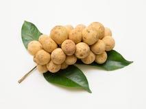Longkong, fruits thaïs Photographie stock libre de droits