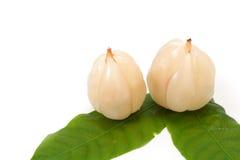 Longkong ,Langsat or Lanzones fruit is endemic to Southeasia Stock Photography