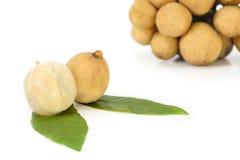 Longkong ,Langsat or Lanzones fruit is endemic to Southeast Asia Royalty Free Stock Photo