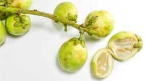 Longkong, Langsat lub Lanzones owoc, jest endemiczna Południowo-wschodni Asia/Gadu guda, obraz stock