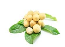 Longkong owoc na białym tle (Lansium parasiticum) Zdjęcia Stock