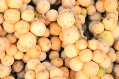 Longkong is the thai tropical fruit. Stock Images