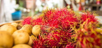 Longkong und Rambutan Stockbilder