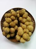 Longkongfruit in mand Royalty-vrije Stock Foto