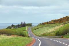 Longo caminho com vista para o mar Fotografia de Stock