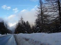 Longo caminho em uma paisagem do inverno Imagem de Stock