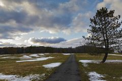 Longo caminho na paisagem das árvores e do céu Imagens de Stock