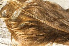 Longs cheveux Photos libres de droits