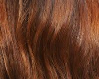 Longs cheveux bruns comme fond Image libre de droits