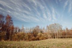 Longs cirrus et paysage image stock