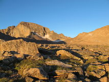Longs Peak in the morning Royalty Free Stock Photos