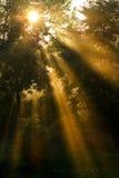 Longs rayons du soleil Images libres de droits